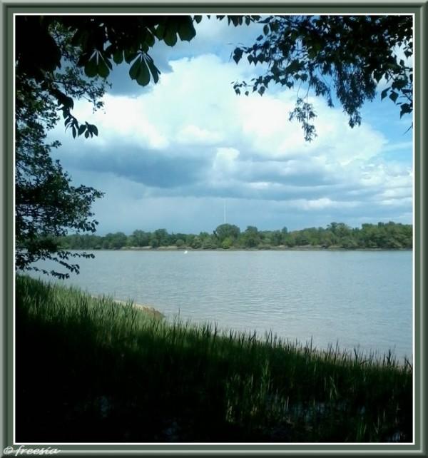 Bordeaux - Les Rives d'Arcins  - Le carrelet