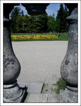 Jardin public, vue entre deux 2011