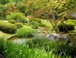 Ruisseau-jardin