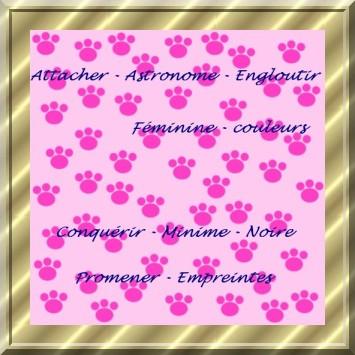 empreintes_de_pattes_animaux septembre 1er_